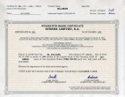 Panama_Share-Certificate Page: 1