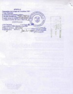 Panama_Apostilled-Extract-of-public-registry-of-Panama-in-English-and-Spanish Page: 3