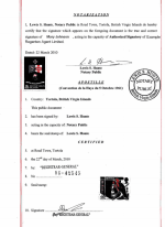 BVI_Apostille-of-the-bound-set-of-copies-of-constitutive-documents Page 1 Shot