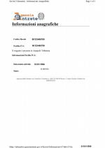 VAT_sas Page 1 Shot