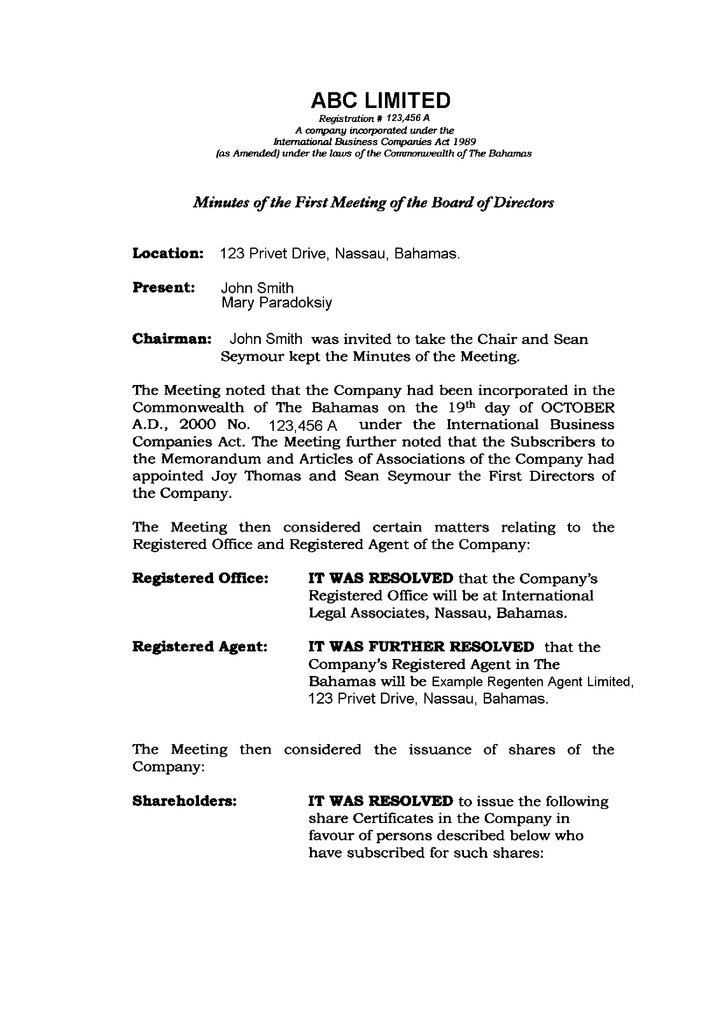 minutes of shareholders meeting template -