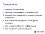 1037_Vladimir_Kitsing_Uklonenie_ot_nalogov_PRESENTATION_DEMO Page 3