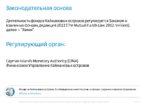 60_Yana_Selezneva_Investicionnye_fondy_Kaymany_PRESENTATION_DEMO Page 2