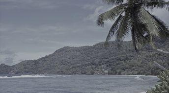 Ликвидация компании зарегистрированной на Сейшелах: