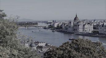 Получение вида на жительство в Венгрии на основании ведения бизнеса.