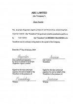 Cayman Island_share transfer.pdf Page: 1