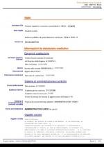 visura_sas Page: 3