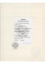 Marshall Islands_Articles of Incorporation_with apostille Page 3 Shot